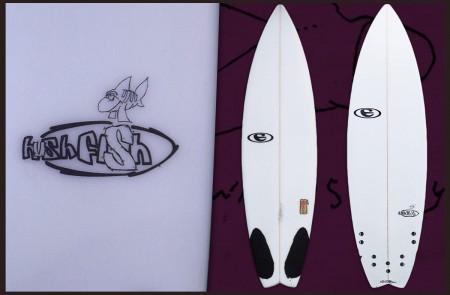 the hushfish model